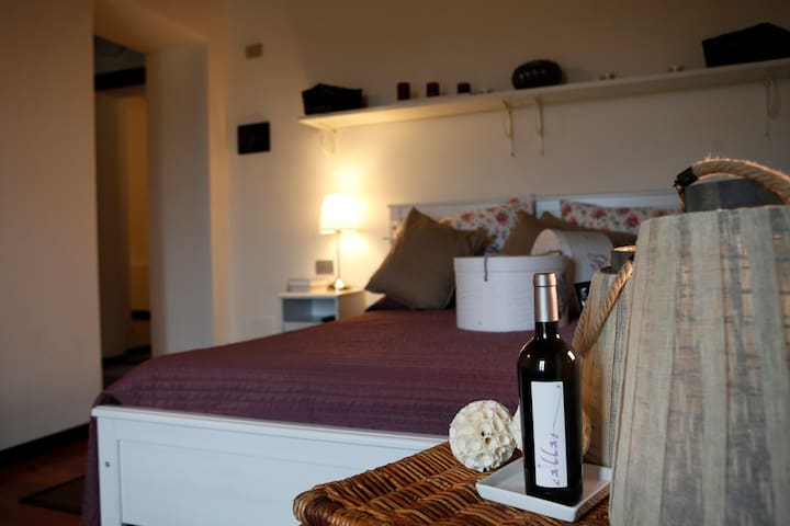 Antico Casale delle Vigne - Callas - Collecchio - Lejlighed