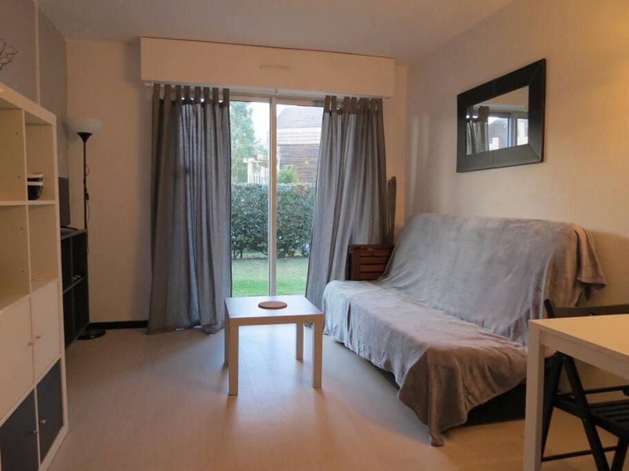 Salon séjour avec lit-canapé