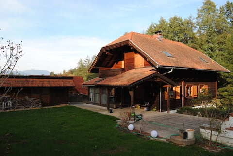 Almgefühl im Stadtgewühl -居心地の良い木造住宅