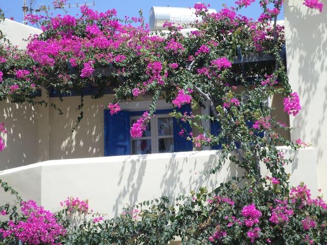 Santorini Flower Covered Apartment