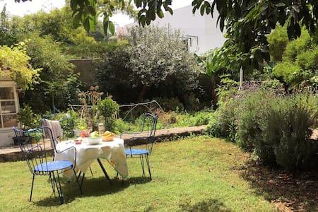 Quiet garden studio in La Orotava - La Vera. La Orotava  - アパート