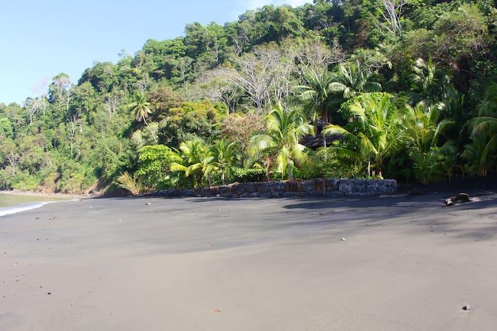 Tropical Island Cove, GulfoDulce - Golfito  - Ostrov