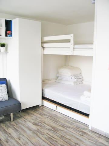 Studio RENOVE proche ALPE D'HUEZ - Allemont - Apartment