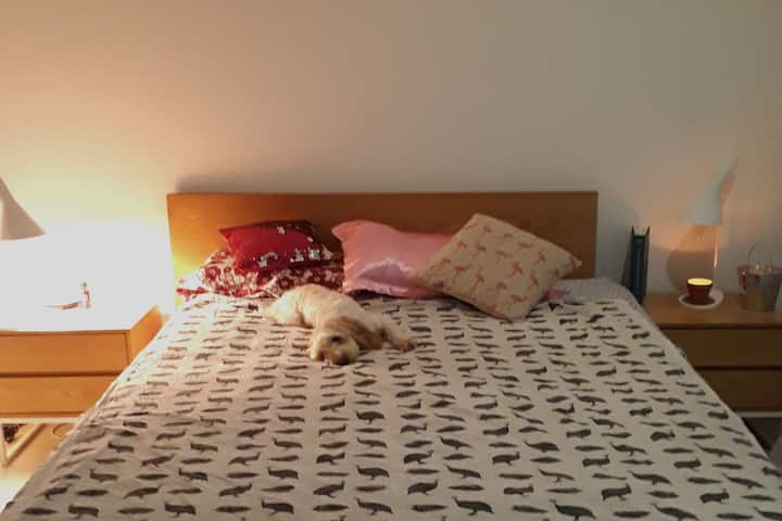 Cozy pet-friendly hideaway near Brisbane city!