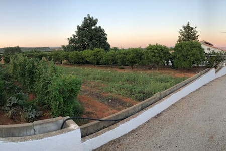 Ca Josepmaria: Campo, espacio, luz y tranquilidad.