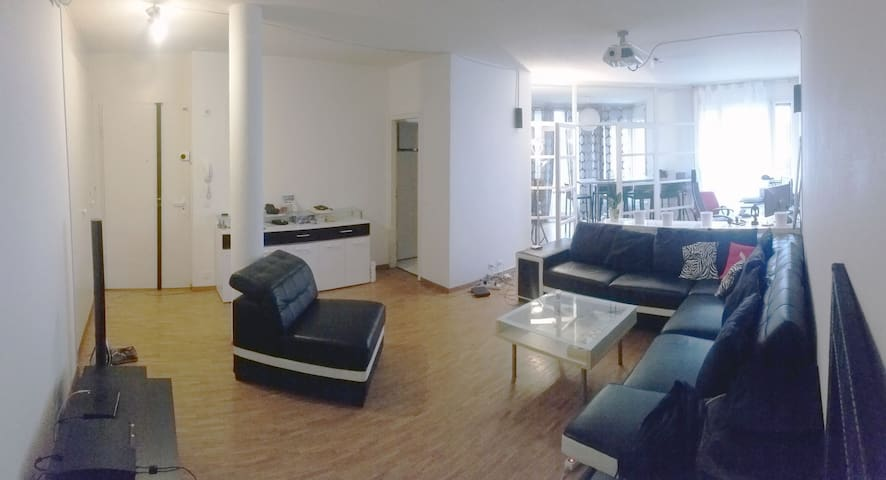 Central and spacious flat by the Geneva Lake