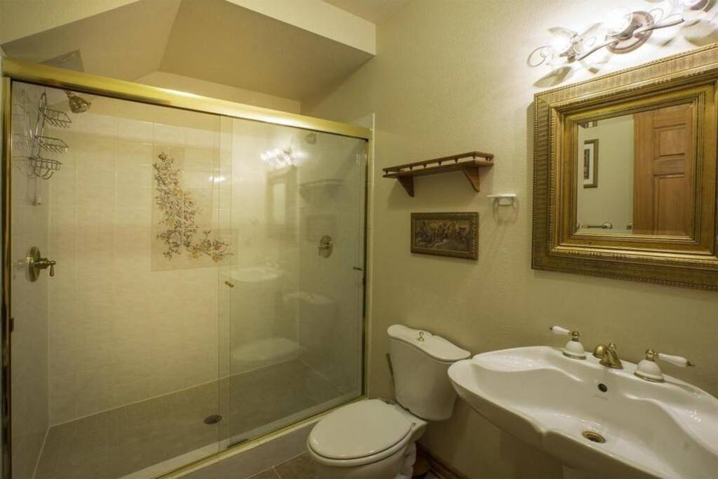 Private bath with large shower/ 2 shower heads