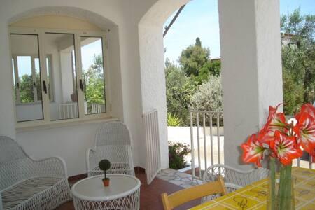case vacanze omaggio ombrellone lido - Vieste - Rumah bandar