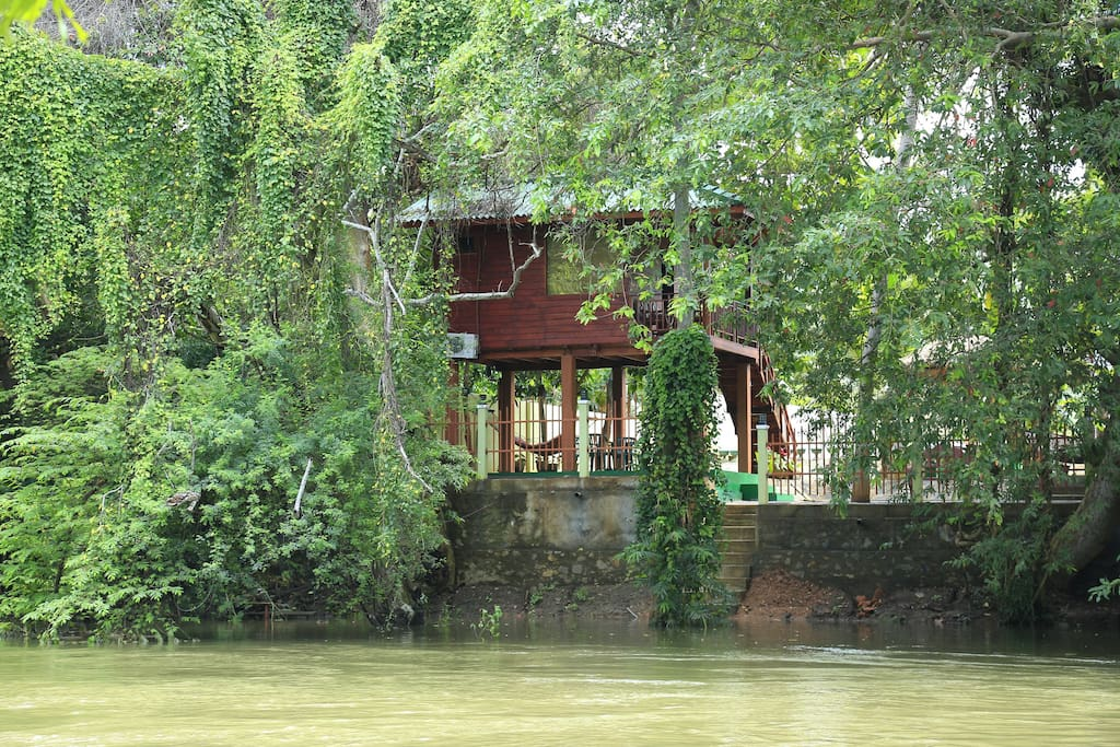 Tree House Over Looking River