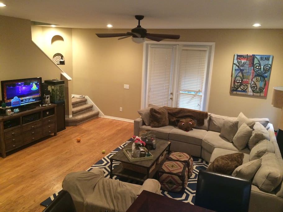 Large living room, couch and tv.