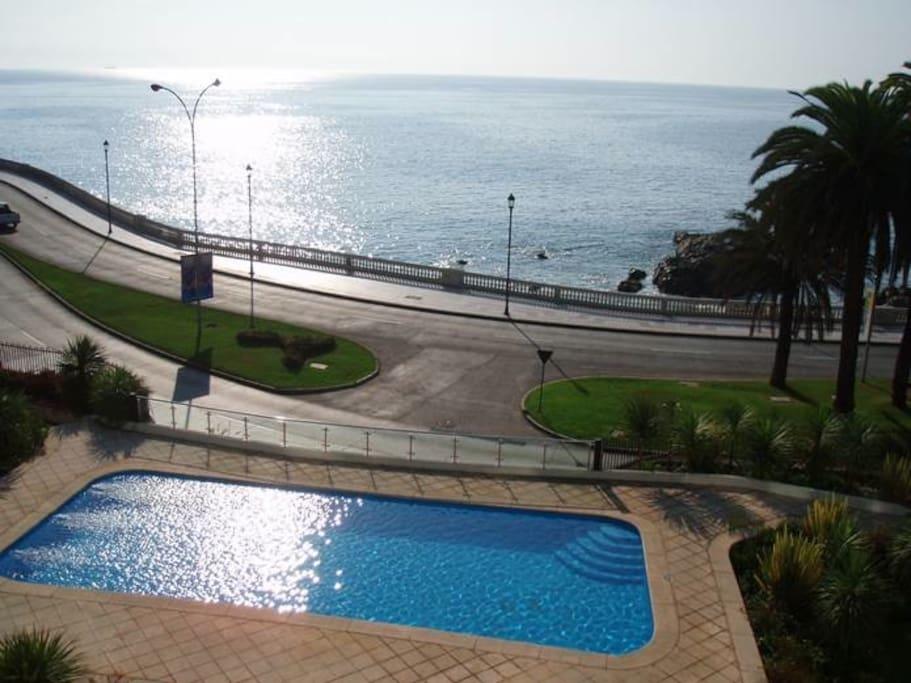 Amazing pool and garden area