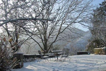 Panchvati Nature Stay - Rajgarh