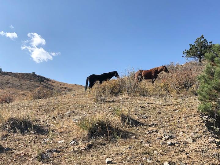 Mountain retreat close to Denver