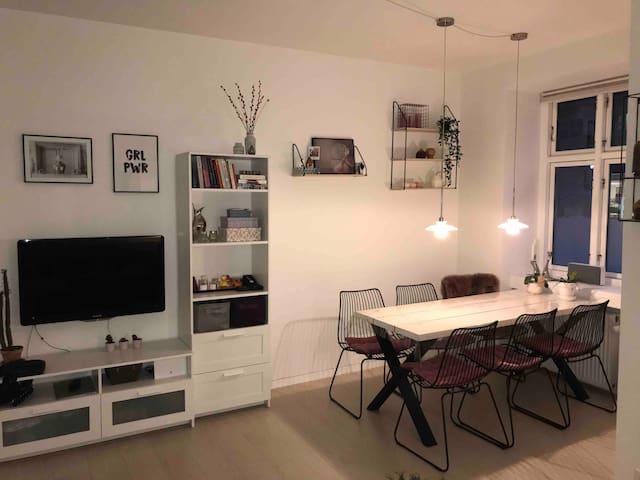 1 bedroom apartment close to centrum
