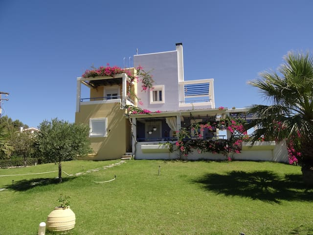 Μargaritas House - Cozy and elegance accommodation - Lachania - Huoneisto