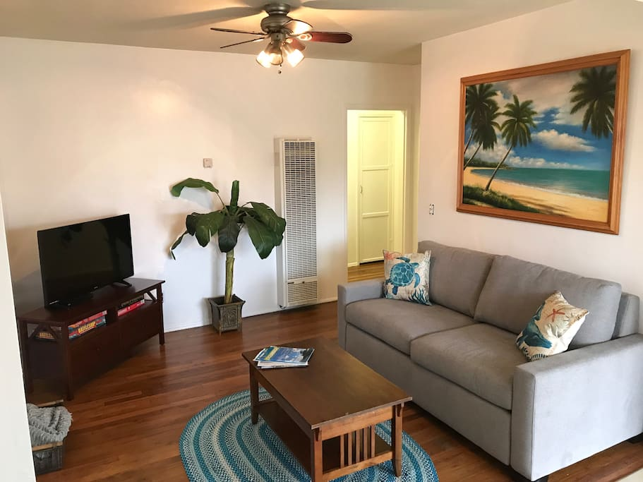 Living room couch with pullout and futon on opposite wall