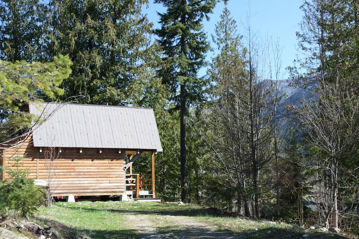 Rustic Lakefront Cabin
