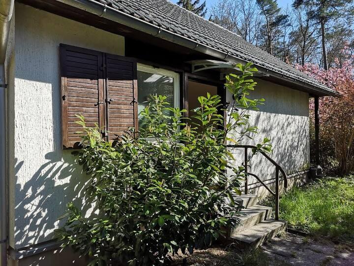 Ruheoase, See, Waldrand, privater Garten, stadtnah