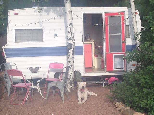 Vintage Glamping in Mid Town Tucson