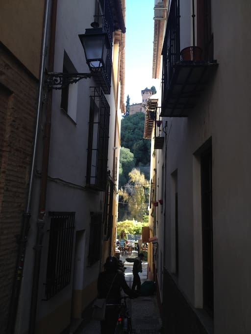 The view from the front door | La vista desde la puerta