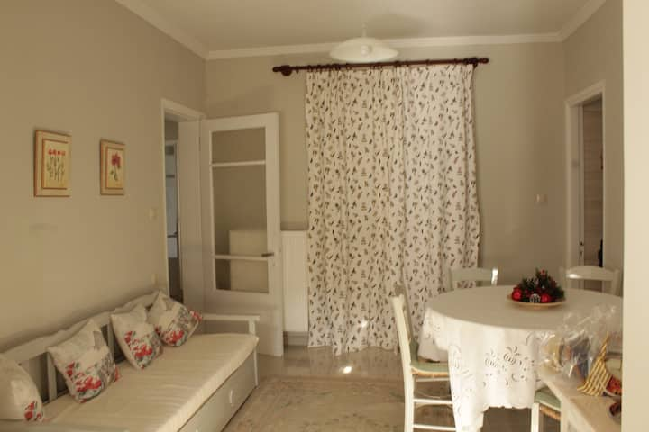 Σπίτι στη Νεράιδα Λάρισας
