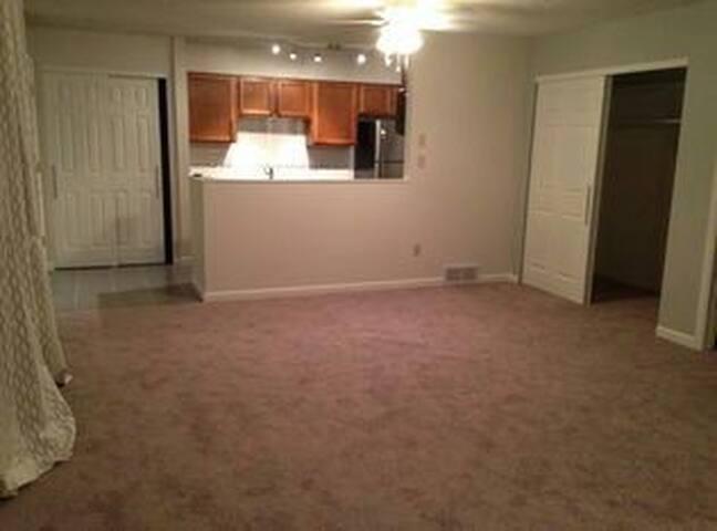 Cozy Condo Space - Colorado Springs - Appartement