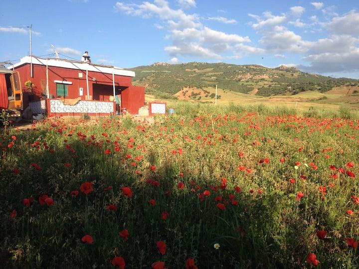 Morocco Middle Atlas beauty  : quiétude et liberté