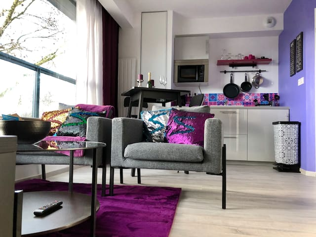 sweet studio purple appartements louer reims grand est france. Black Bedroom Furniture Sets. Home Design Ideas