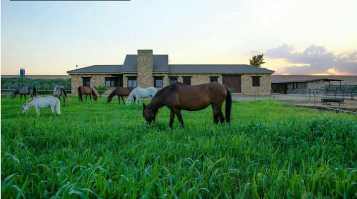 Casa Rural Ecuestre-Hab. Doble Cloe Desayuno inclu