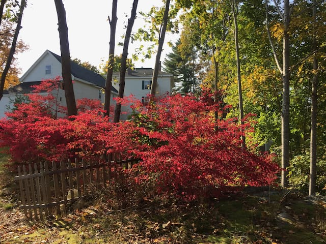 Our Home in the fall