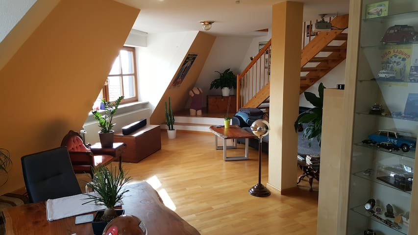Large gallery apartment with a beautiful view