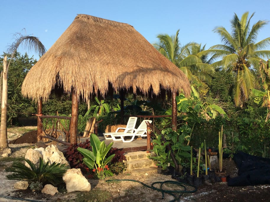 Palapa with cot or hamacas