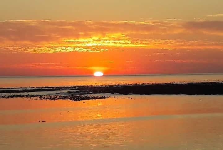 Sunsets & Penguins!