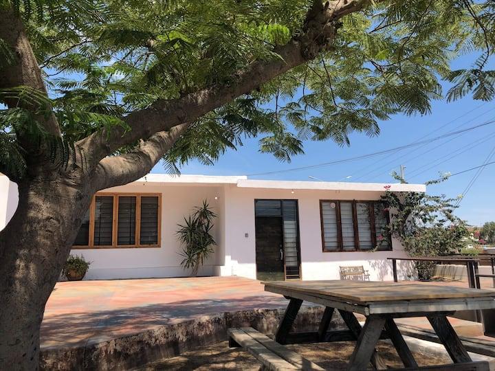 Casa caracol, Loft Style