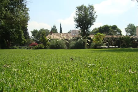 Room in beautiful garden - Mexiko-Stadt - Villa