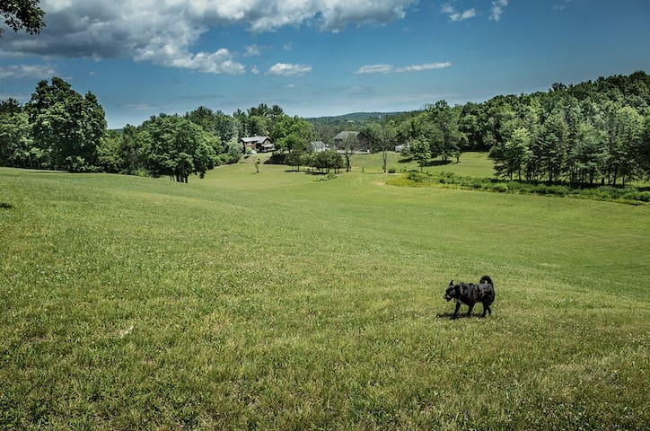 Private 19th Century Modern Estate 5 Min. to HITS - Saugerties - House