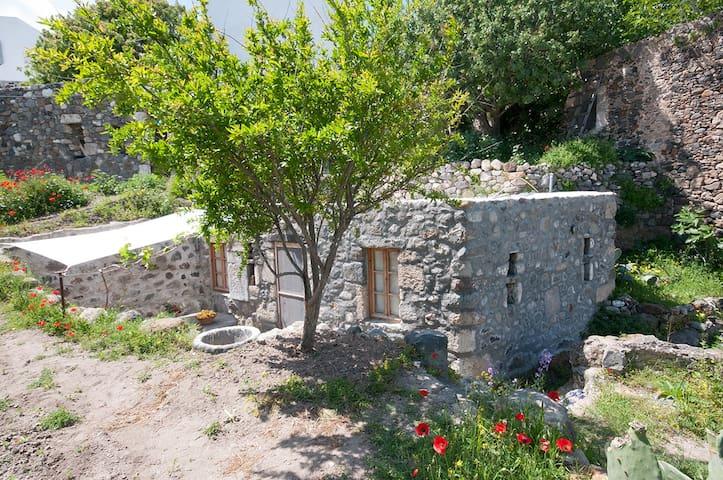 Cozy stone house with garden
