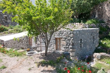 Stone house with garden