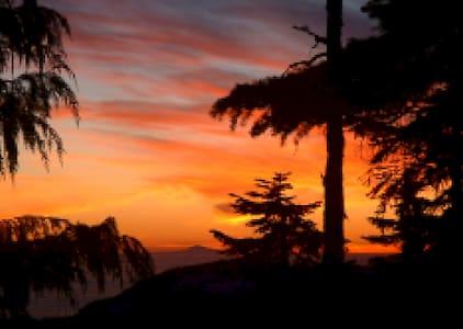 Mt.Washington Alpine Village - Courtenay - Chalet