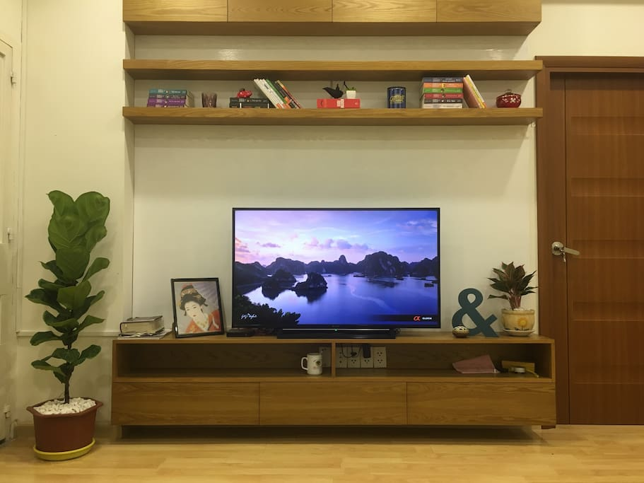 "48"" smart television with HD box, over hundred channels"