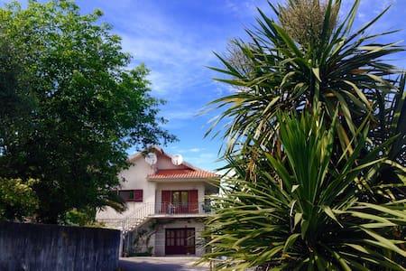 Location d'une maison - Casa d'hote - Prozelo