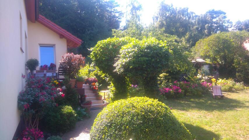Pokoje w domu z ogrodem I