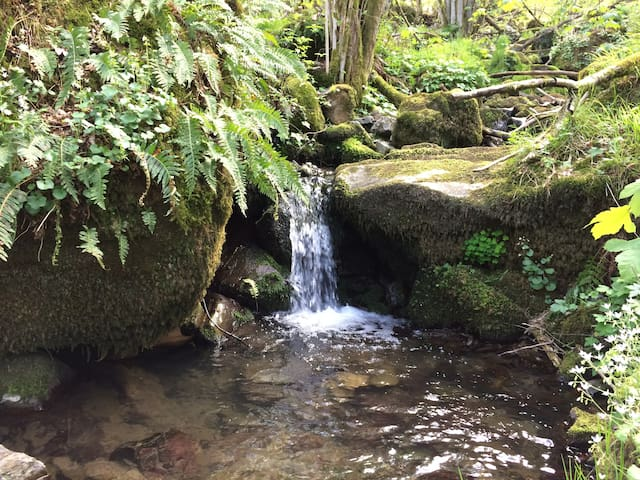 Natura e Pace