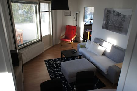 Cozy 2 room apartment, groceries and TUT near - Tampere - 公寓
