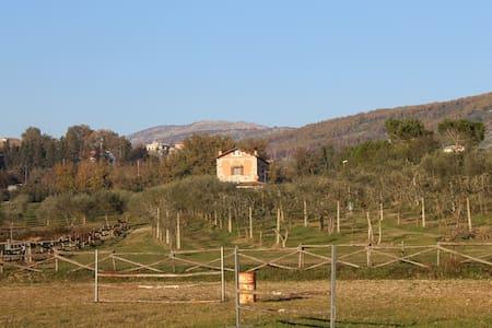Agriturismo Pony Ranch 4 - Santi Cosma e Damiano - Villa