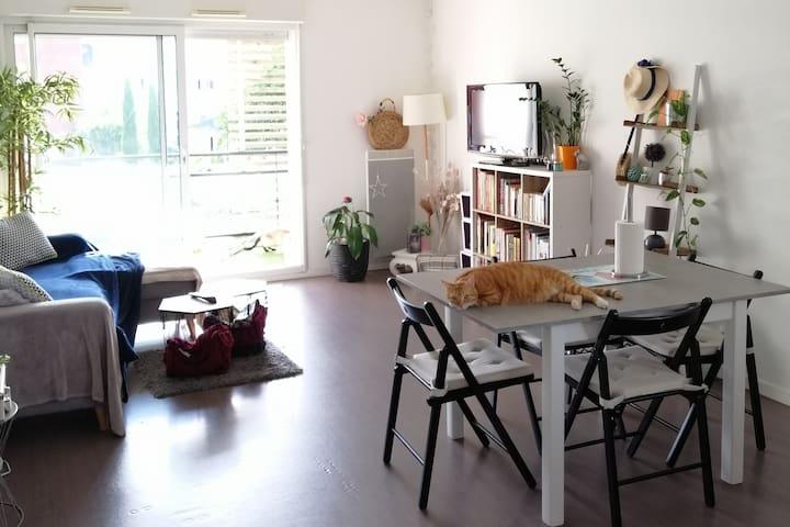 Appartement T3 Auray Golfe du Morbihan