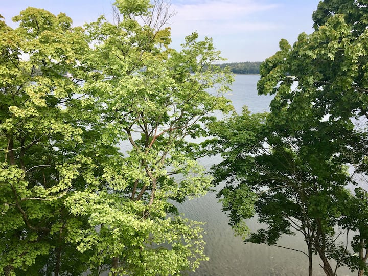 Mazury - lake view apartment