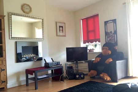 Double Room Available in Bright Dublin Apartment - Clonee - House