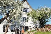 200 Jahre altes Reetdach-Bauernhaus