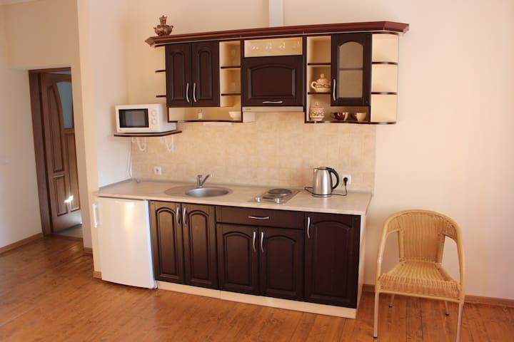Квартира студио с отдельной спальней и балконом - Skhidnytsya - Hus